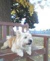 Kidd2006_252