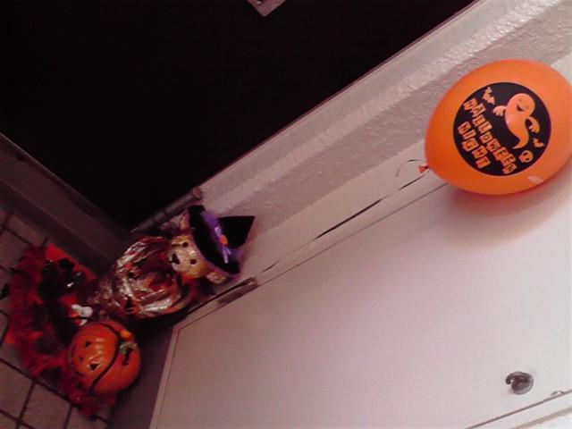 10月31日山手ハロウィン犬