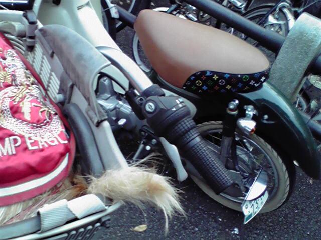 自転車あったよー。