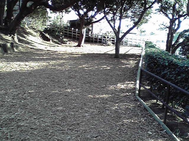 1月27日山手公園犬