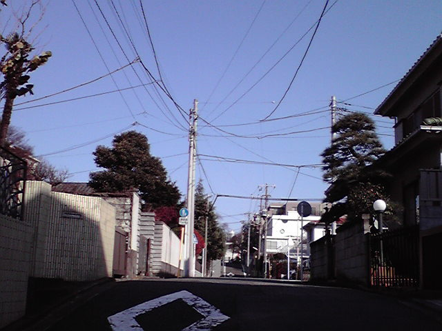 12月26日大福神犬