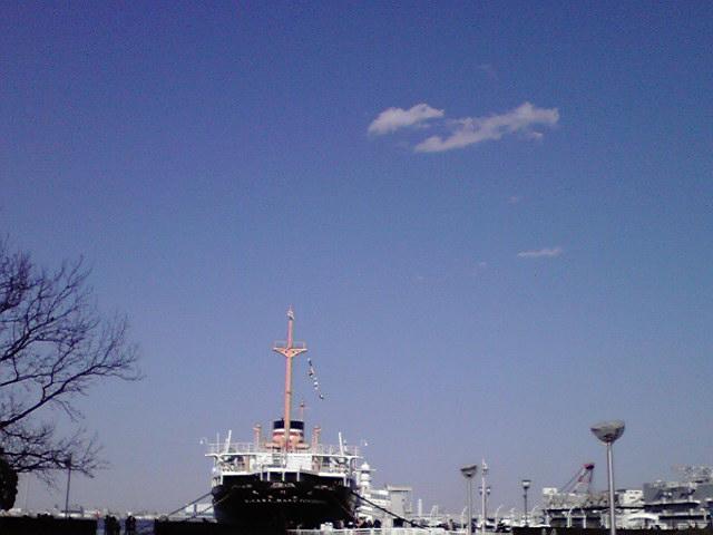 2月13日海犬