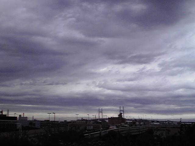 5月30日台風犬