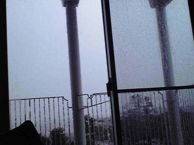 9月21日台風15号犬