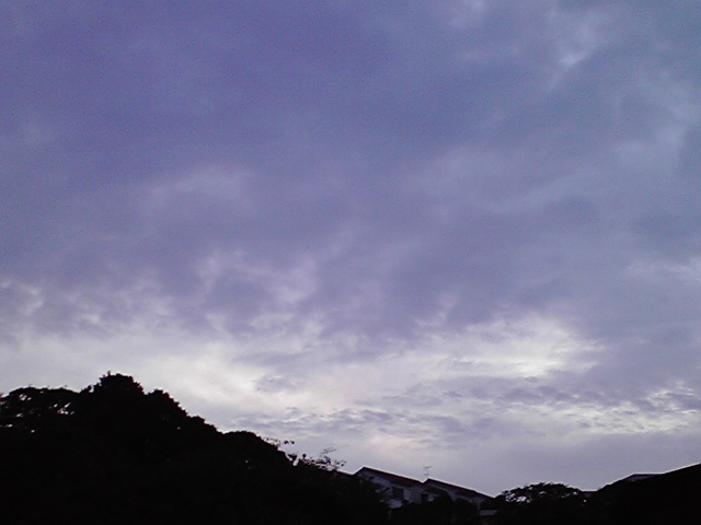 明日から雨だ