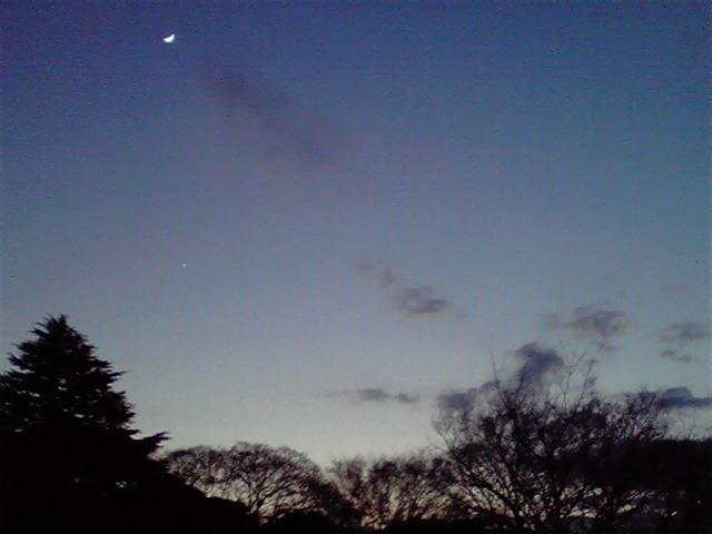 見上げる夜空に