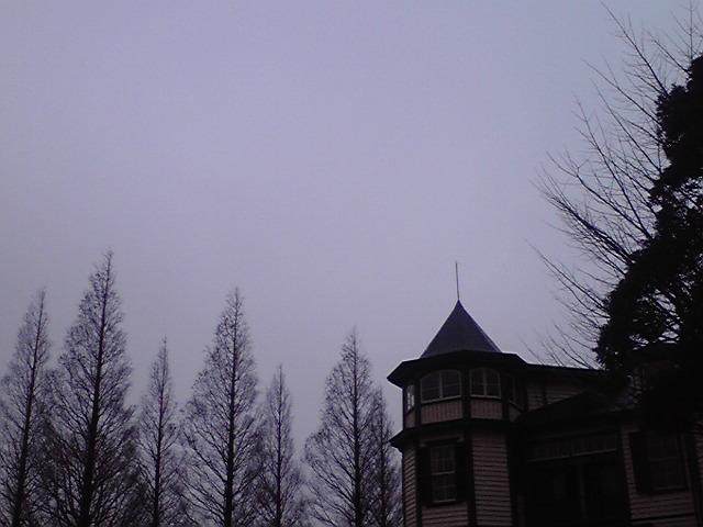 3月23日雨犬