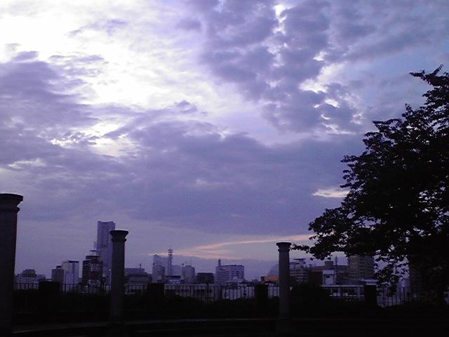 7月9日サマ〜タイム犬