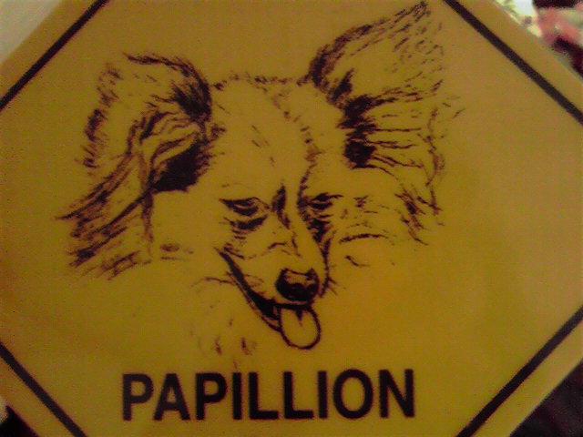 危ないパピヨン