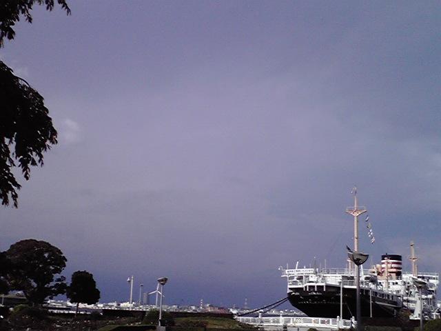 9月7日嵐の前の犬
