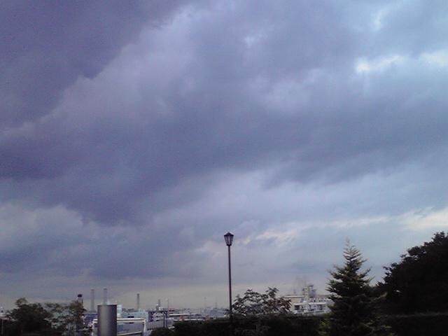 9月24日雨犬