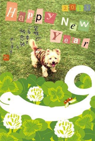 1月2日笑う犬