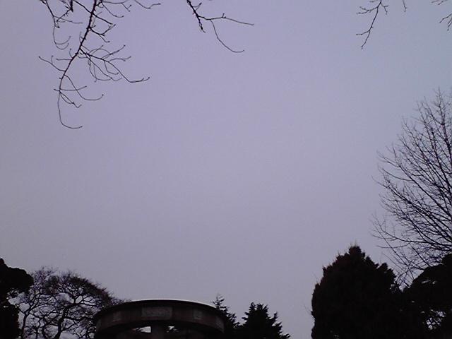 2月15日隕石犬