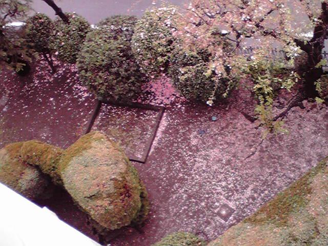 お庭がピンク