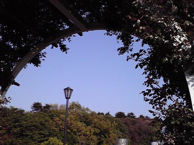 4月15日高島屋犬