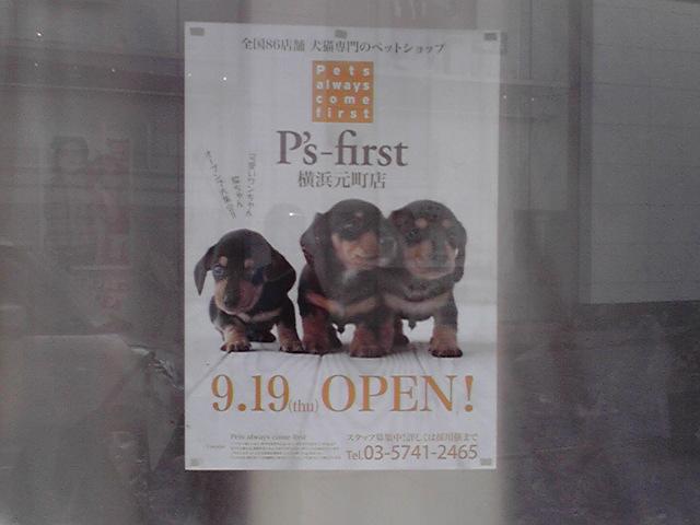 9月9日お!も!て!な!し!犬